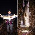 マンボウさんの千葉県習志野市での釣果写真