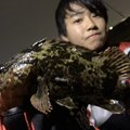 名港はやとさんのタケノコメバルの釣果写真