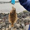 かつさんの鹿児島県での釣果写真
