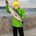 ひなちゃんマンさんの大分県での釣果写真