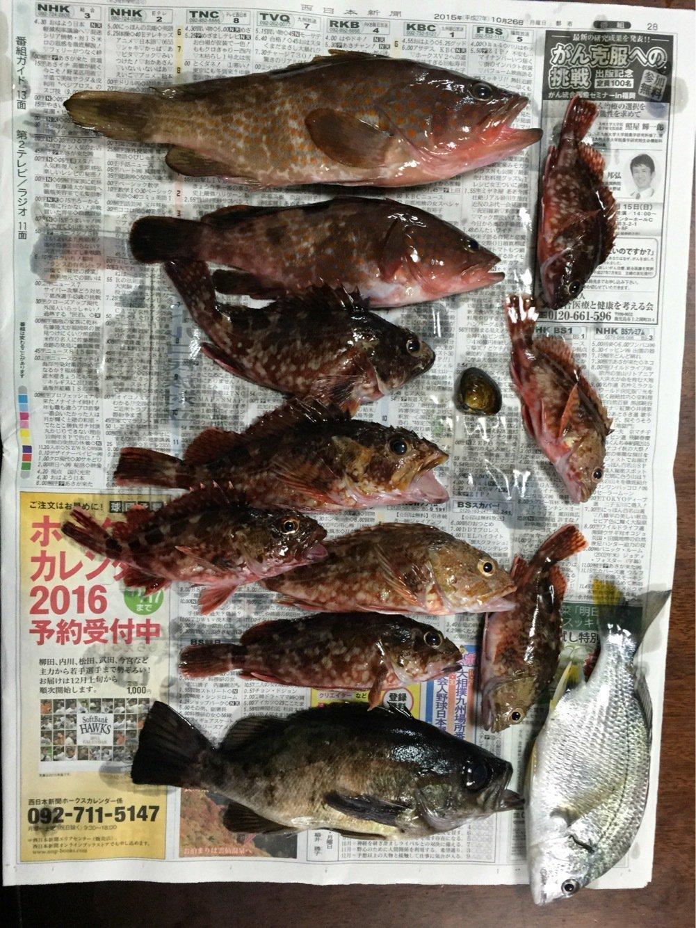 hazamaさんの投稿画像,写っている魚は