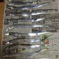 ヒデポンさんの大阪府四條畷市でのタチウオの釣果写真