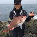 みやっちさんの長崎県長崎市でのマダイの釣果写真