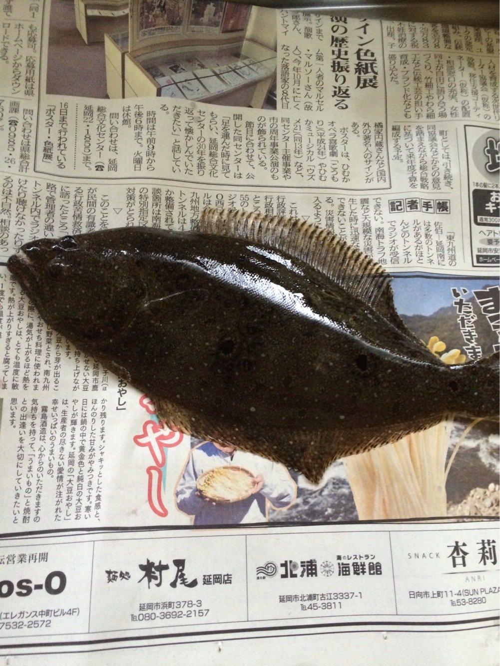 蓮さんの投稿画像,写っている魚はヒラメ