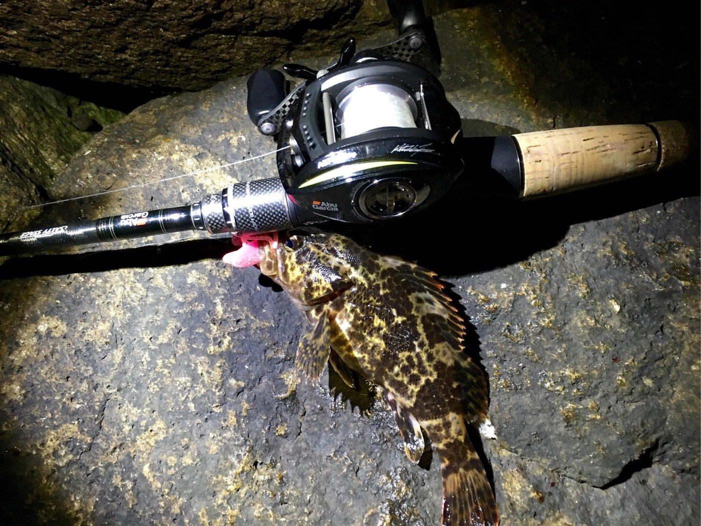 OrangUtanさんの投稿画像,写っている魚はタケノコメバル