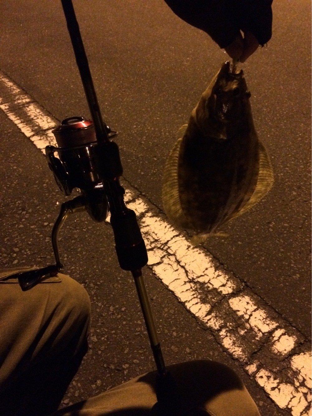 ささきょんさんの投稿画像,写っている魚はヒラメ