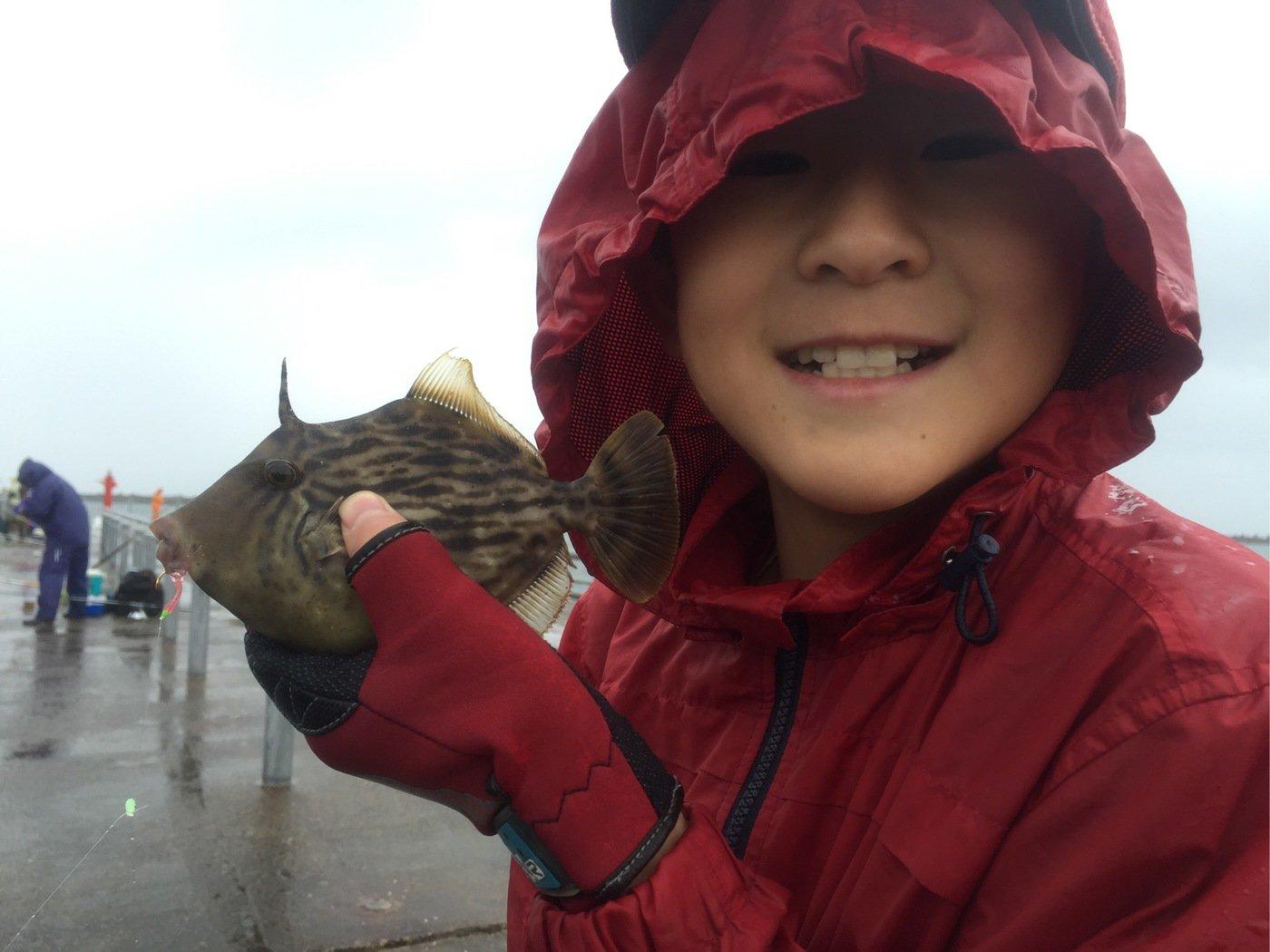 fish hunter 57号さんの投稿画像,写っている魚はカワハギ