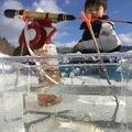 にっしーさんの北海道三笠市での釣果写真