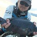 ジャンボーさんの神奈川県相模原市での釣果写真