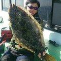 Saito Naokazuさんの千葉県いすみ市でのヒラメの釣果写真