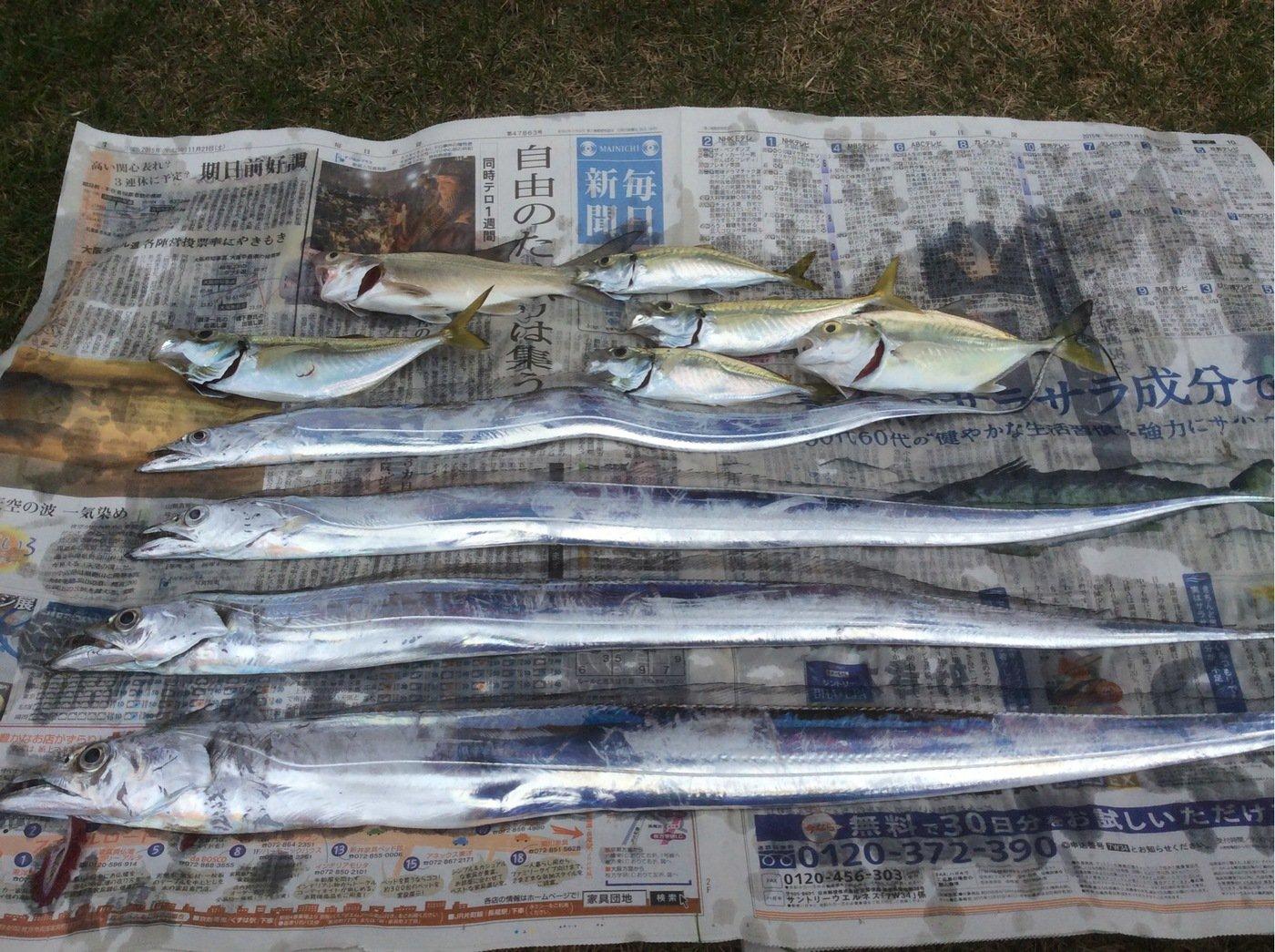 釣りかわさんの投稿画像,写っている魚は