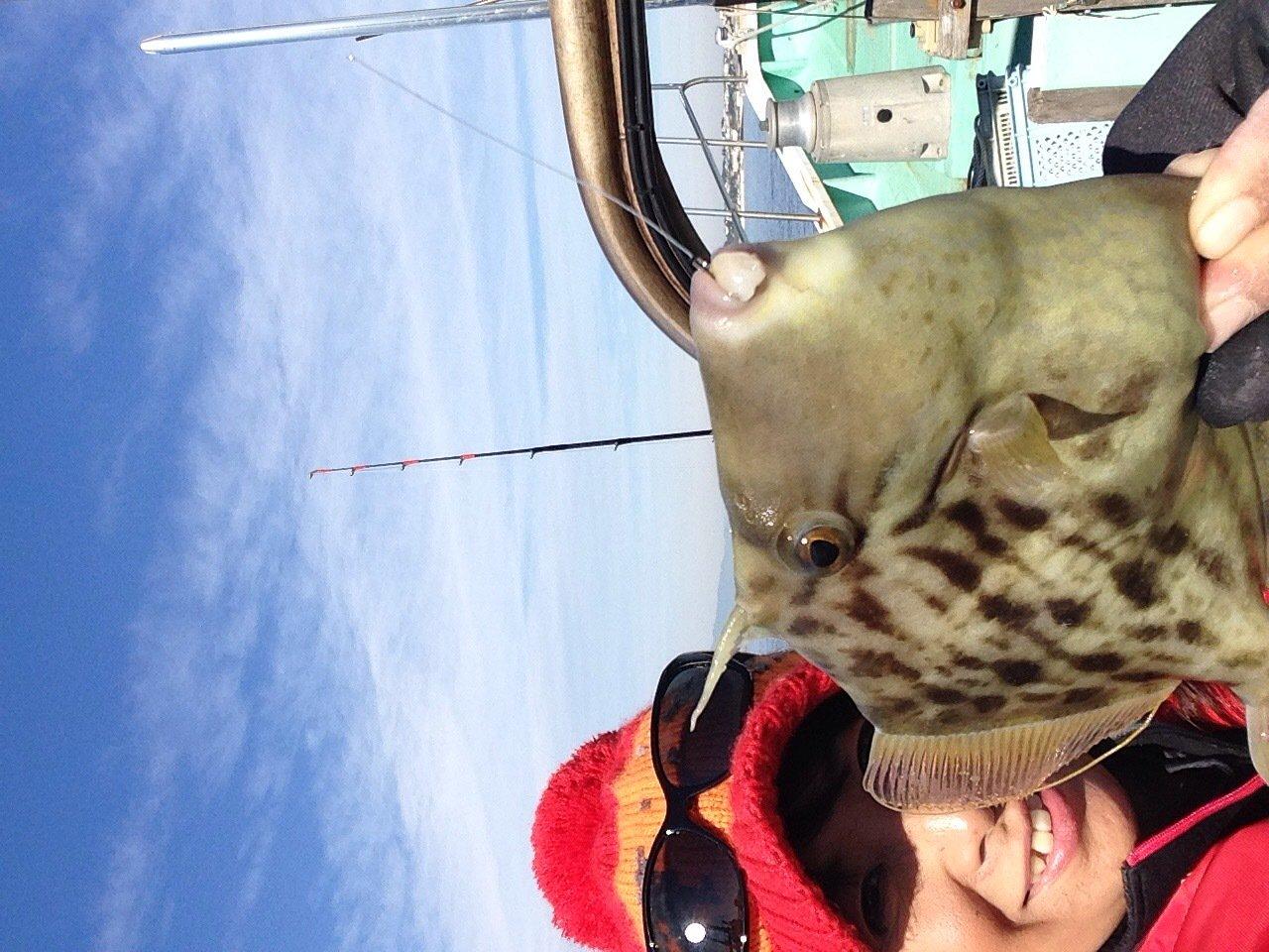 Masakoさんの投稿画像,写っている魚はカワハギ