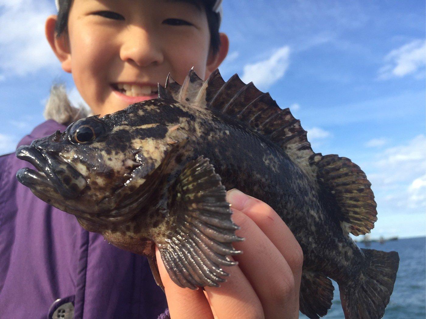 fish hunter 57号さんの投稿画像,写っている魚はムラソイ