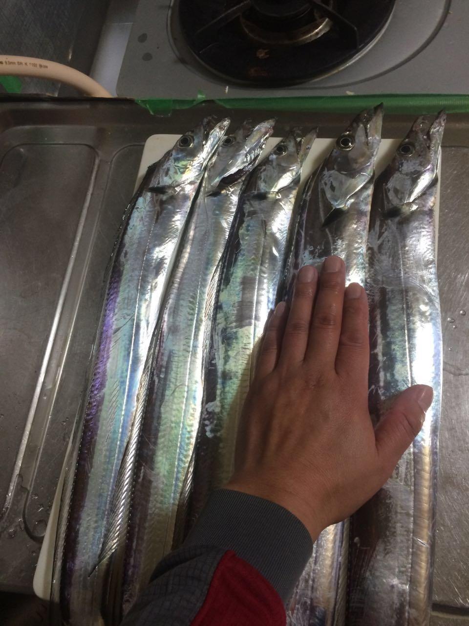 nishimoriさんの投稿画像,写っている魚は