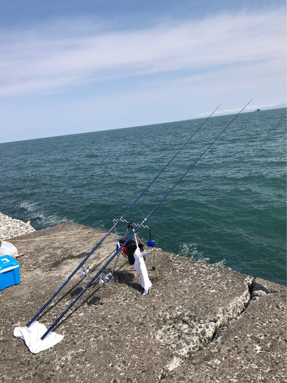 藤島亮太(クラゲ)さんの投稿画像,写っている魚はマガレイ