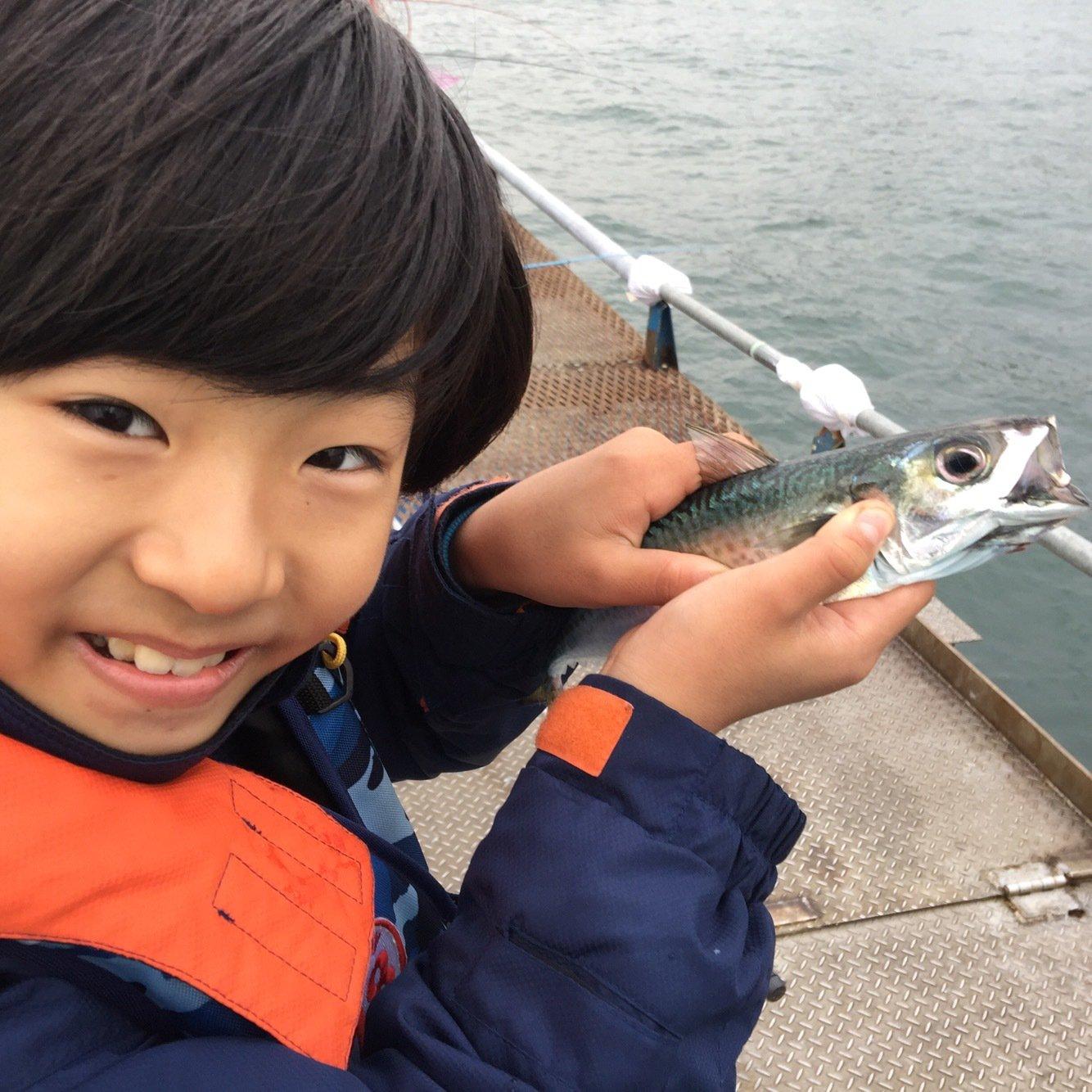 はにおさんの投稿画像,写っている魚はゴマサバ