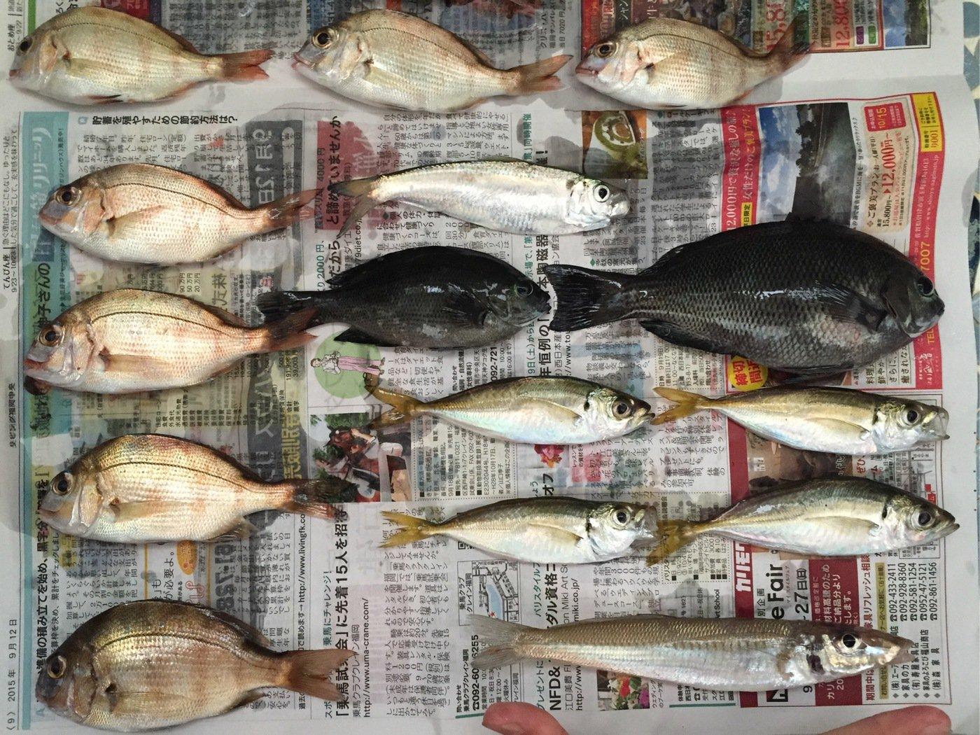 さっとんさんの投稿画像,写っている魚はマダイ