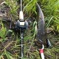 Rさんの和歌山県日高郡での釣果写真