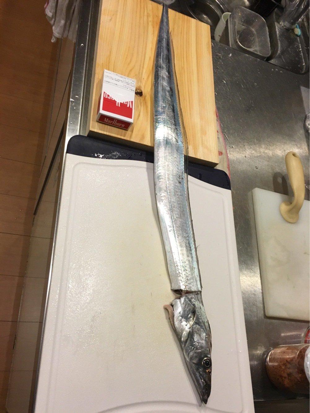 Ryoさんの投稿画像,写っている魚はタチウオ