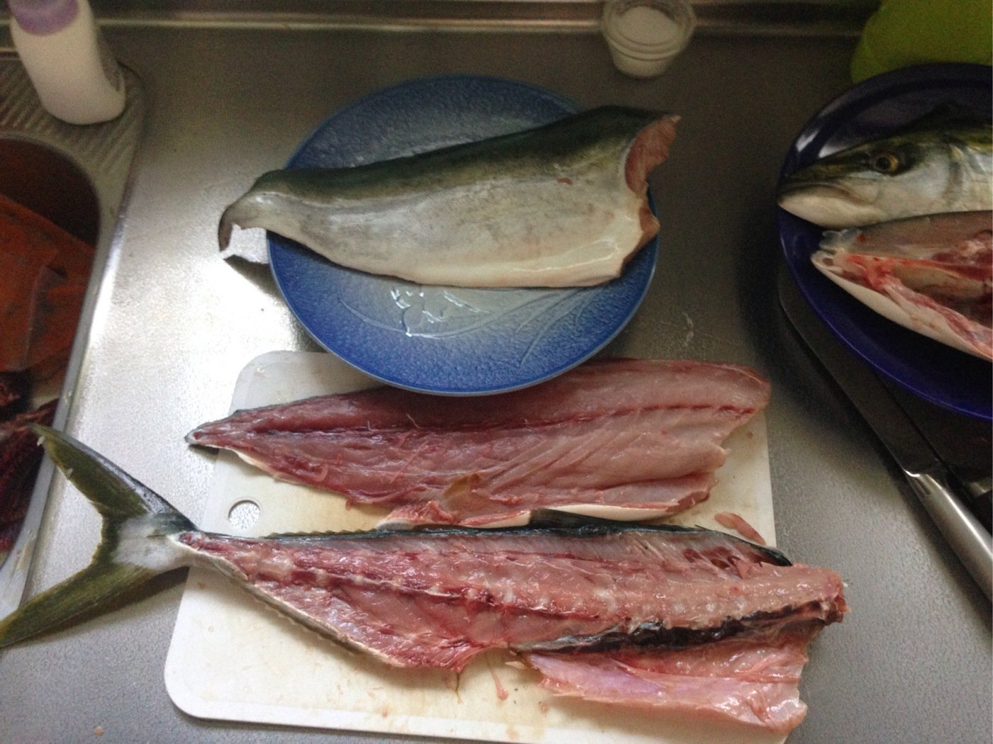 馬笑さんの投稿画像,写っている魚はワラサ