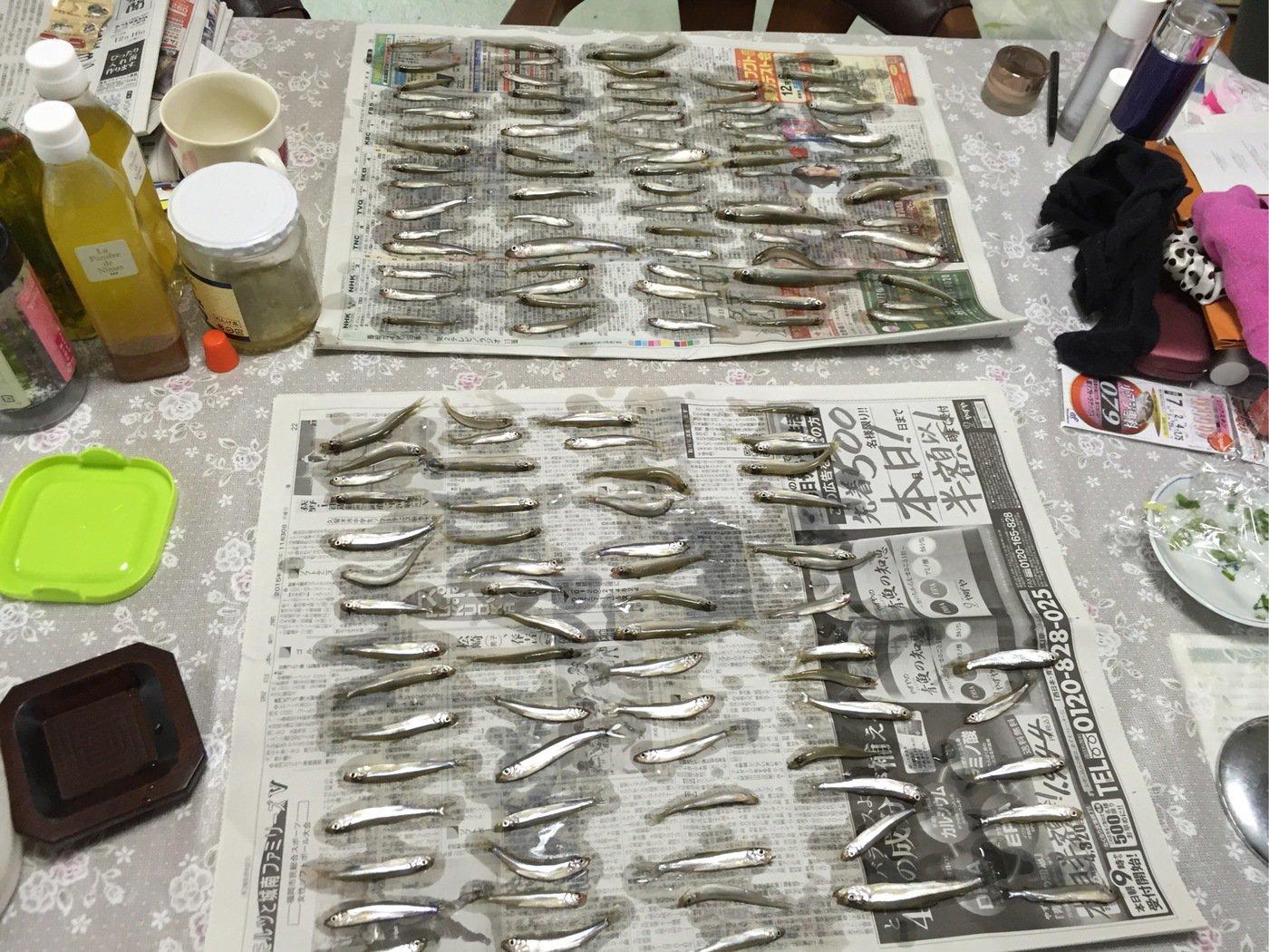 FPP48さんの投稿画像,写っている魚はワカサギ