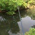 ビギさんの岐阜県関市での釣果写真