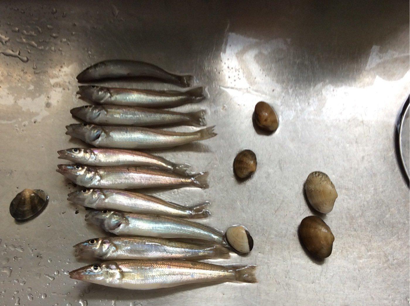 通りすがりの釣り好きさんの投稿画像,写っている魚は