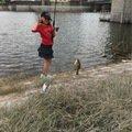 ギンさんの埼玉県でのブルーギルの釣果写真