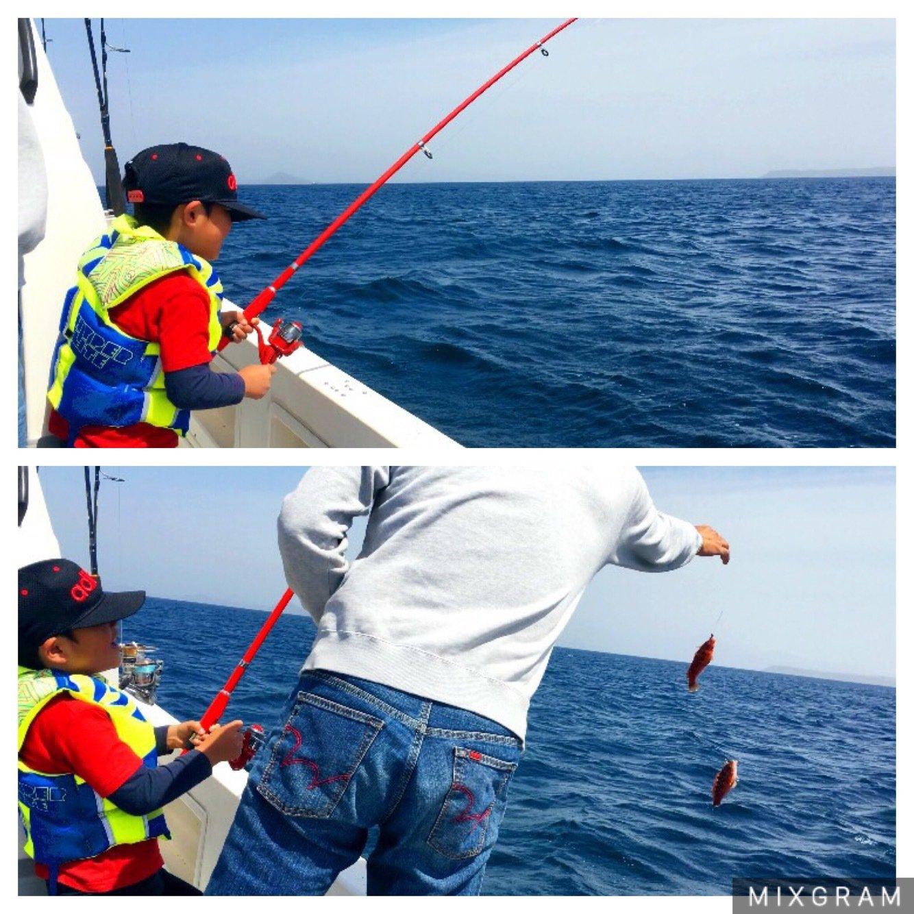 KOROsukeさんの投稿画像,写っている魚はアカササノハベラ