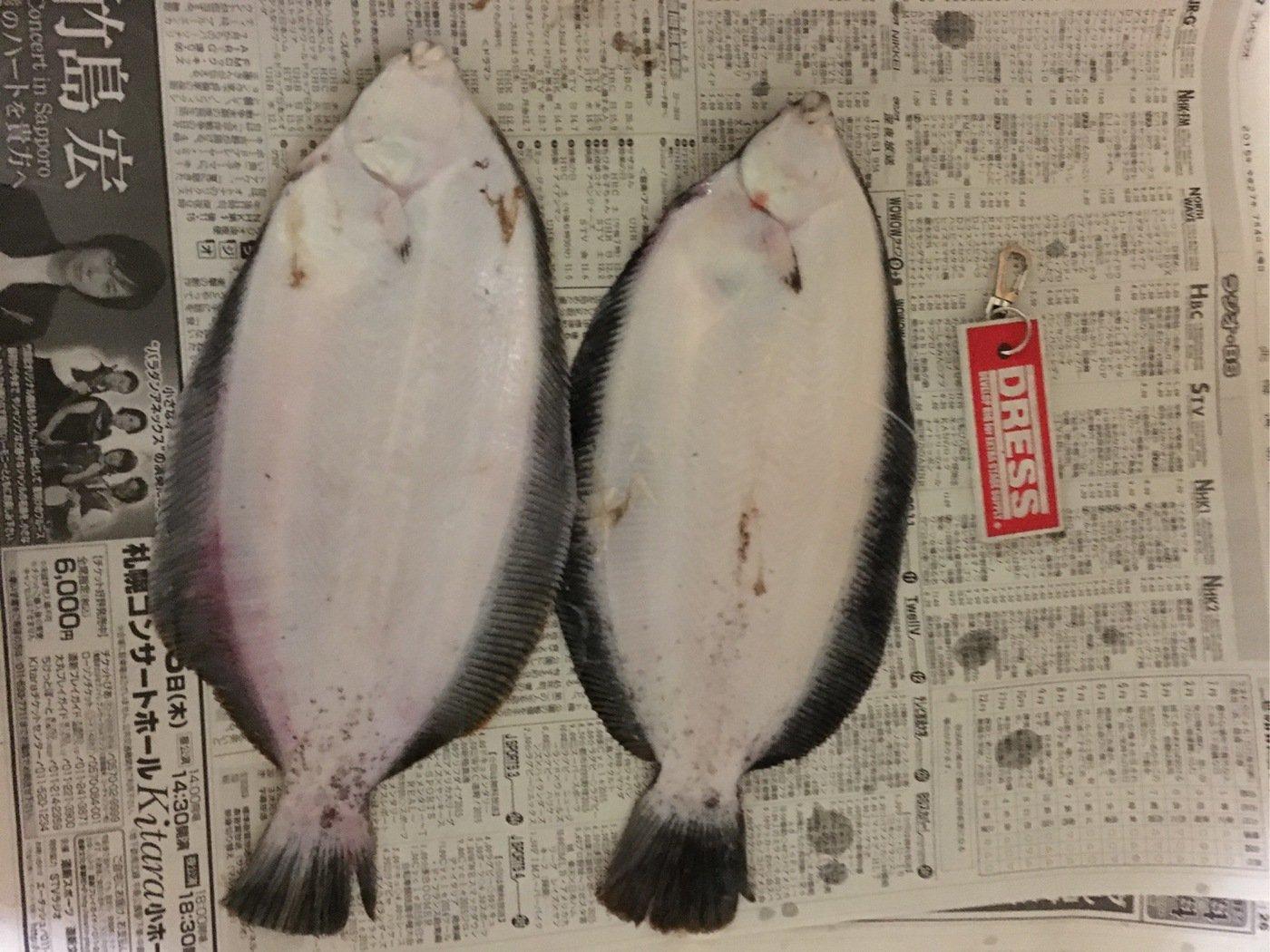 0138STYLEさんの投稿画像,写っている魚はババガレイ