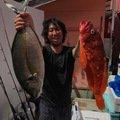 ゆーとさんの東京都三宅島での釣果写真