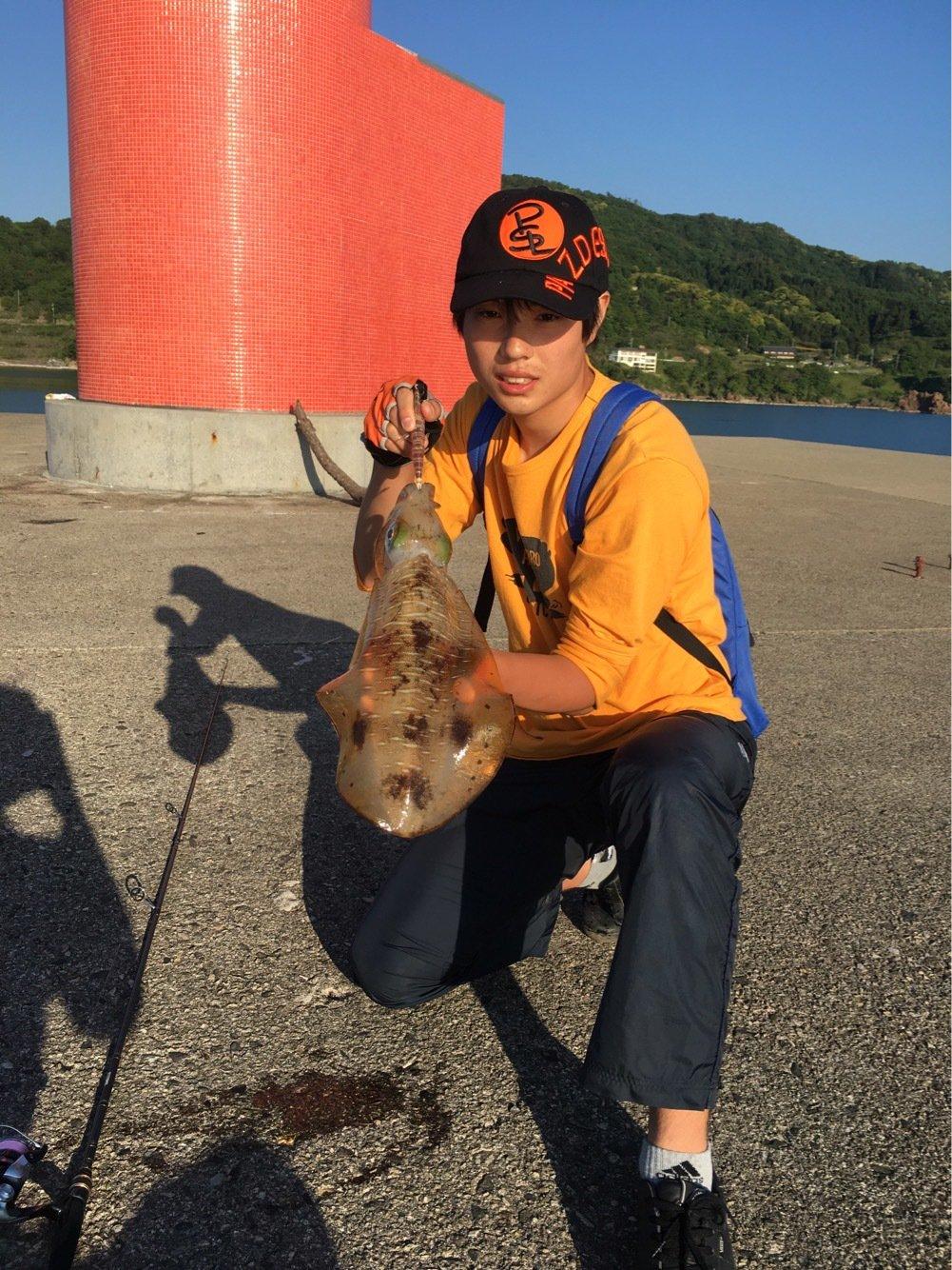Hirotoさんの投稿画像,写っている魚はアオリイカ