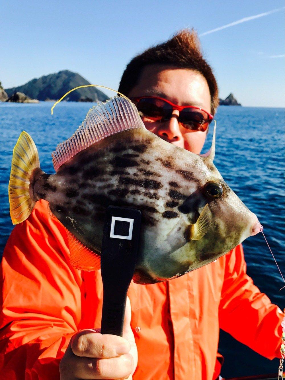 yamさんの投稿画像,写っている魚はカワハギ