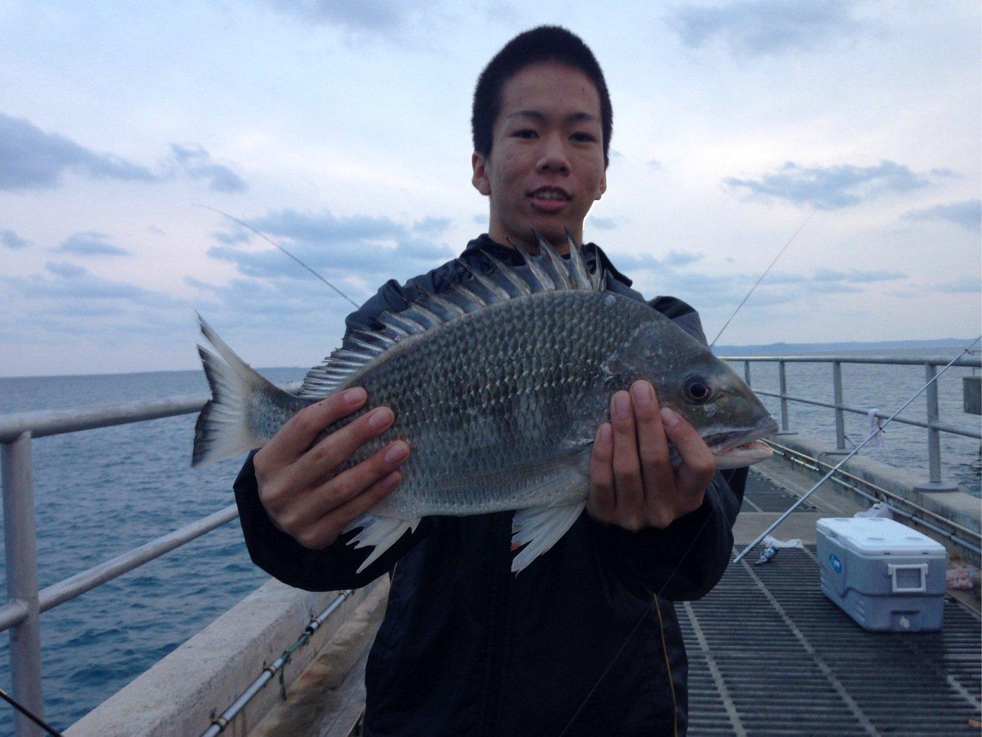 こーへーさんの投稿画像,写っている魚はクロダイ