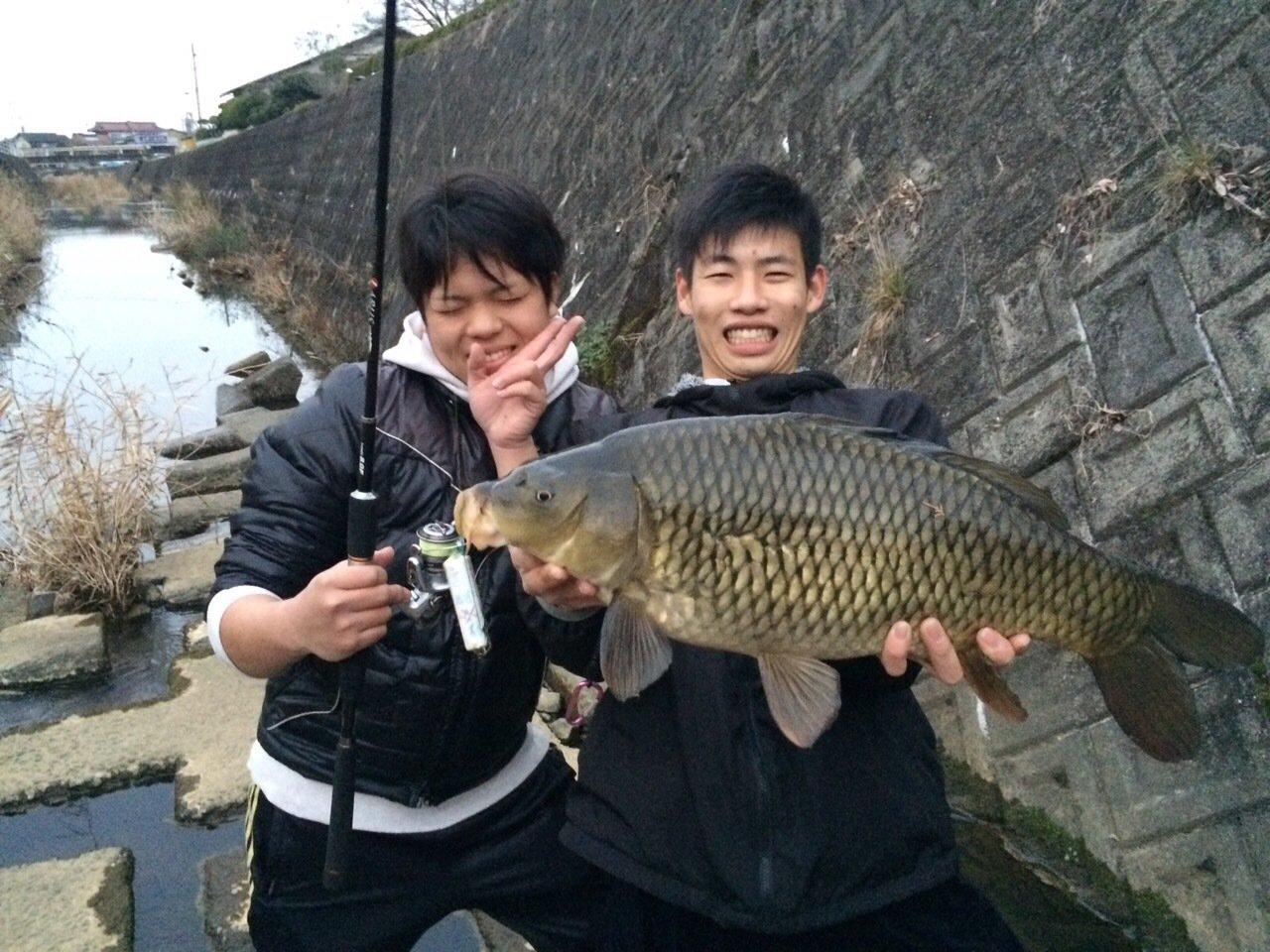 わかめ太郎さんの投稿画像,写っている魚はコイ