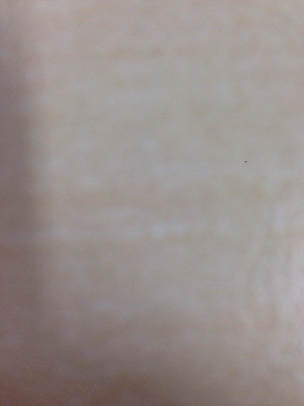 スパわさんの投稿画像,写っている魚はアイカジカ