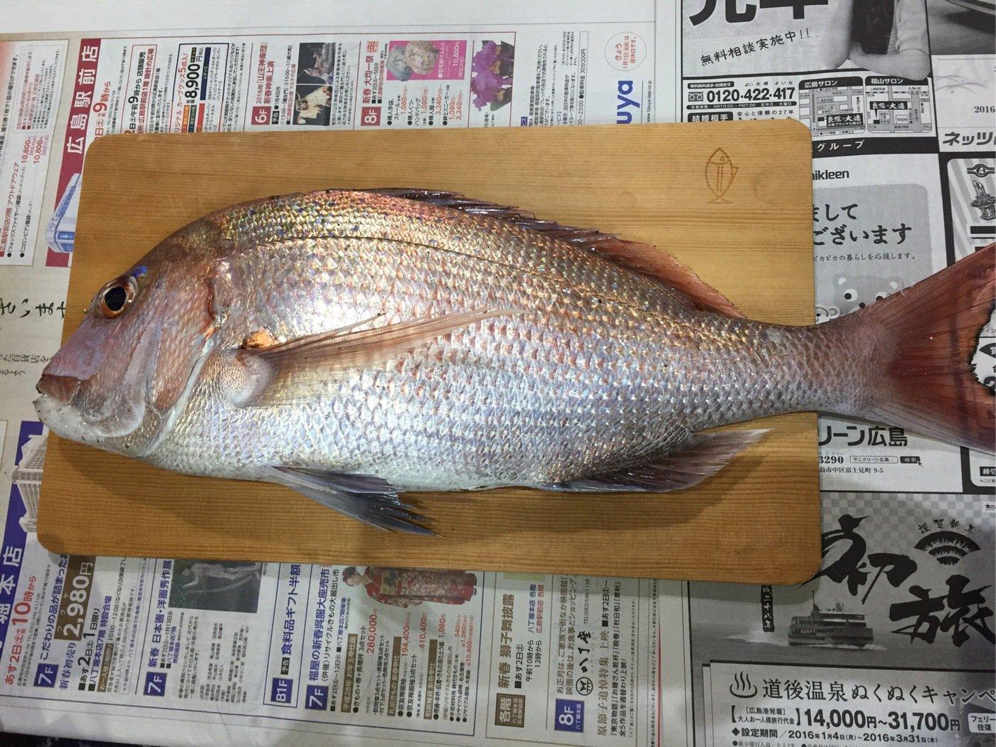 hazumuさんの投稿画像,写っている魚はマダイ