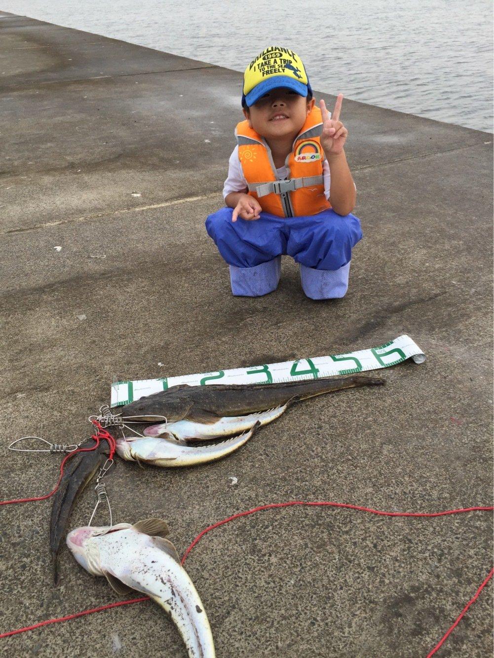 kasai1116さんの投稿画像,写っている魚は