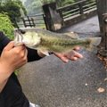 卓也(*゚▽゚)ノ♡さんの佐賀県杵島郡での釣果写真
