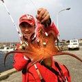 バシケンさんの佐賀県東松浦郡でのマダコの釣果写真