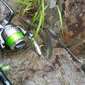 ズキオさんの福島県河沼郡での釣果写真