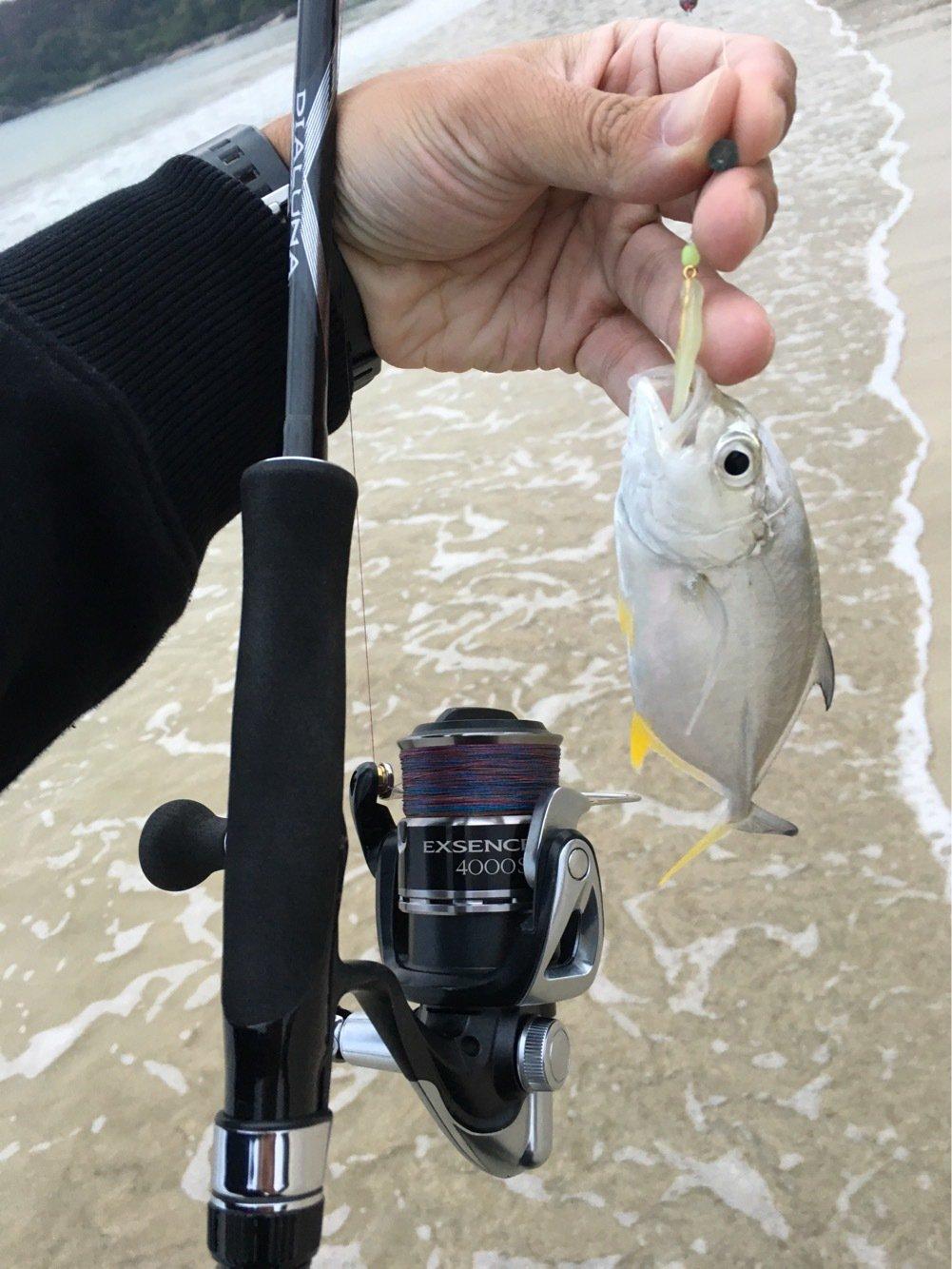 大五郎さんの投稿画像,写っている魚はミナミギンガメアジ