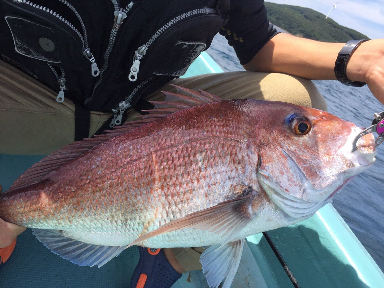 川久保さんの投稿画像,写っている魚はマダイ