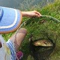 みゆきんぐさんの愛知県尾張旭市での釣果写真