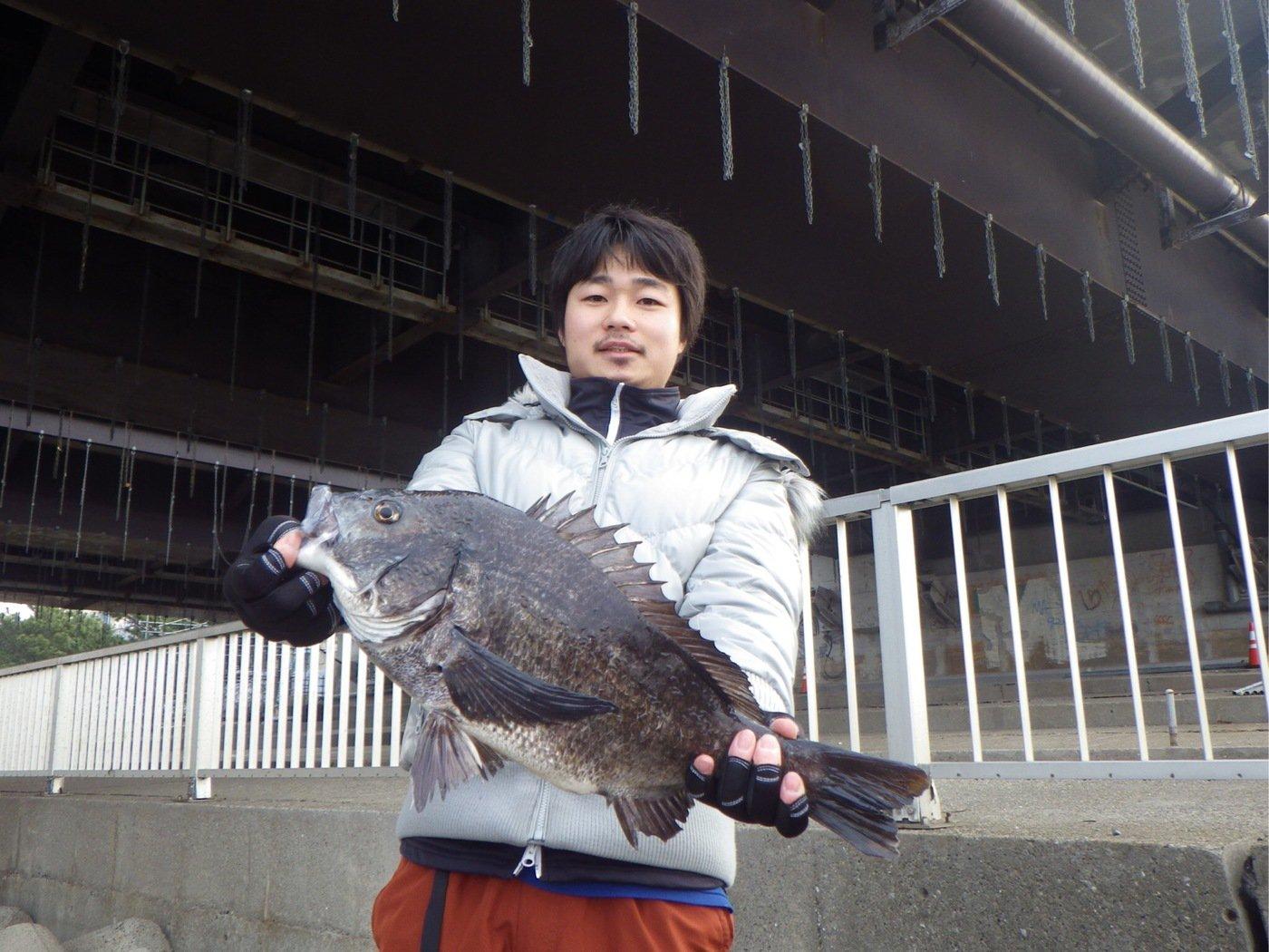 Kentoさんの投稿画像,写っている魚はクロダイ