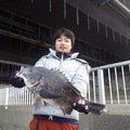 Kentoさんの千葉県習志野市でのクロダイの釣果写真