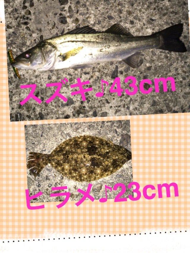 ヨッシーさんの投稿画像,写っている魚はスズキ