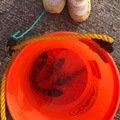 ポポロさんの静岡県賀茂郡でのカサゴの釣果写真