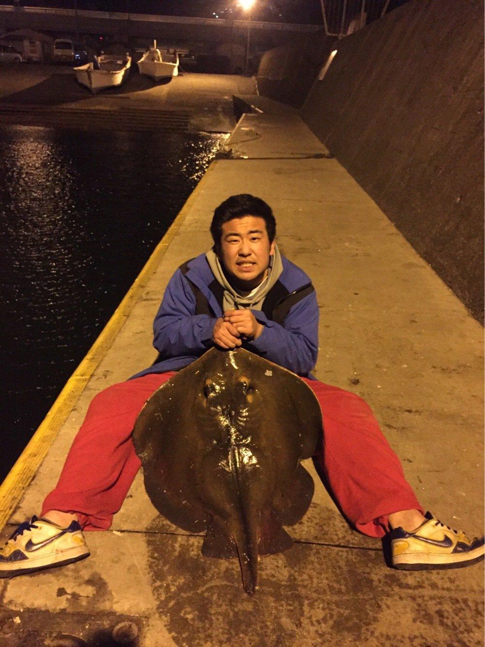 おいなりさんの投稿画像,写っている魚はアカエイ