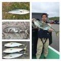 釣りアホ日記 ヤマサシさんの北海道稚内市での釣果写真